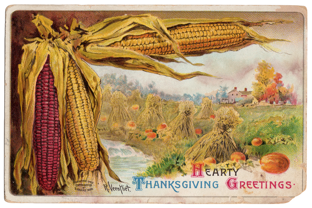 jsim-cathe-holden-thanksgiving-postcard01